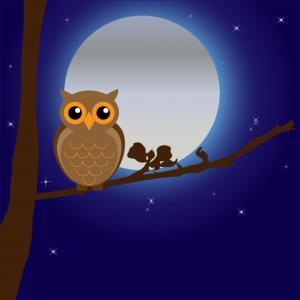 owl-by-moonlight
