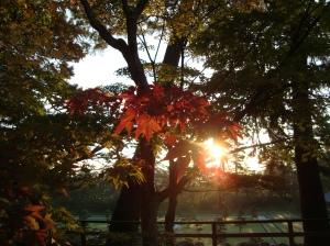 itytp_autumn1