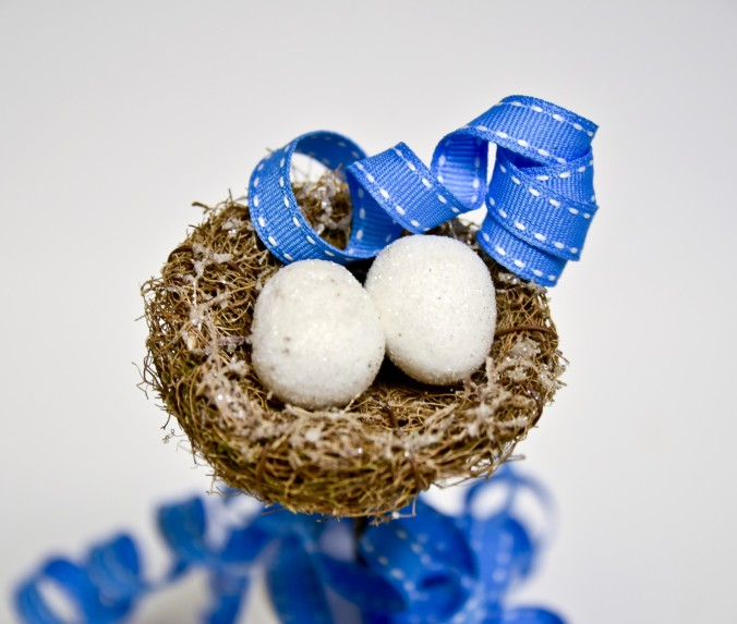 birds-nest-and-blue-ribbon